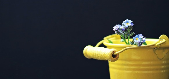 bucket-2156659_960_720